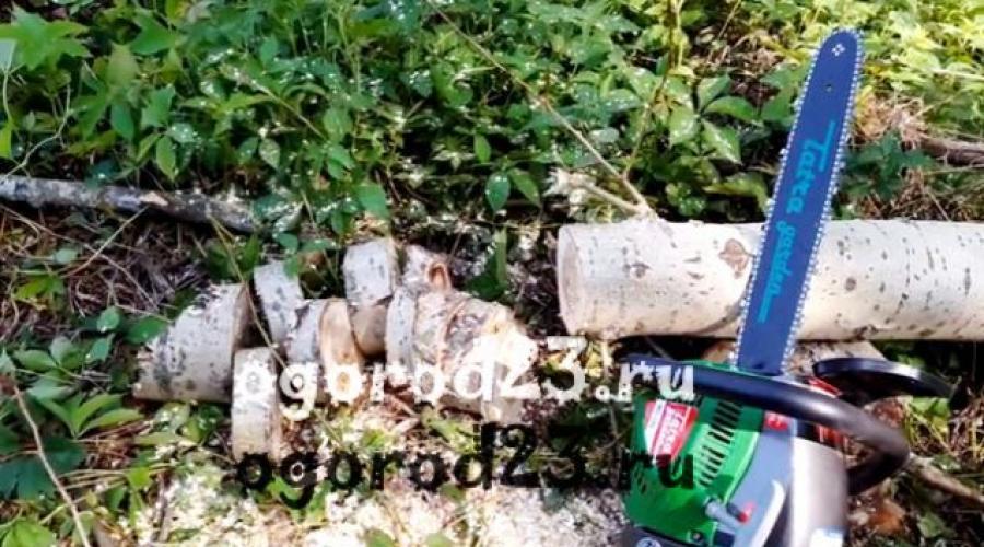 ember láncfűrész keresek nő erdőben