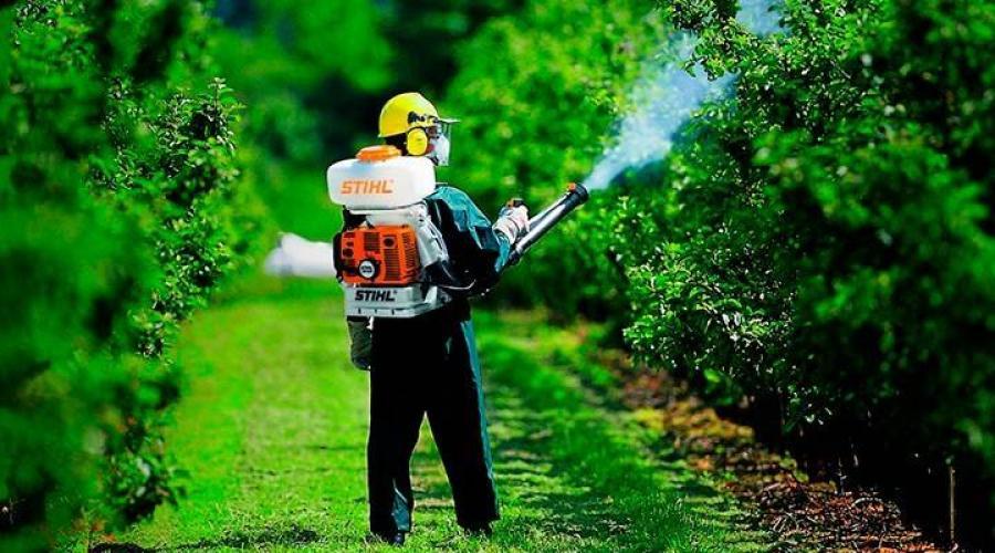 Fungicidas Sistémicos Para Plantas De Interior Fungicidas Sistémicos Fungicidas Efectivos Para Plantas De Interior